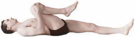 forward bending postures  anatomy of hatha yoga a manual