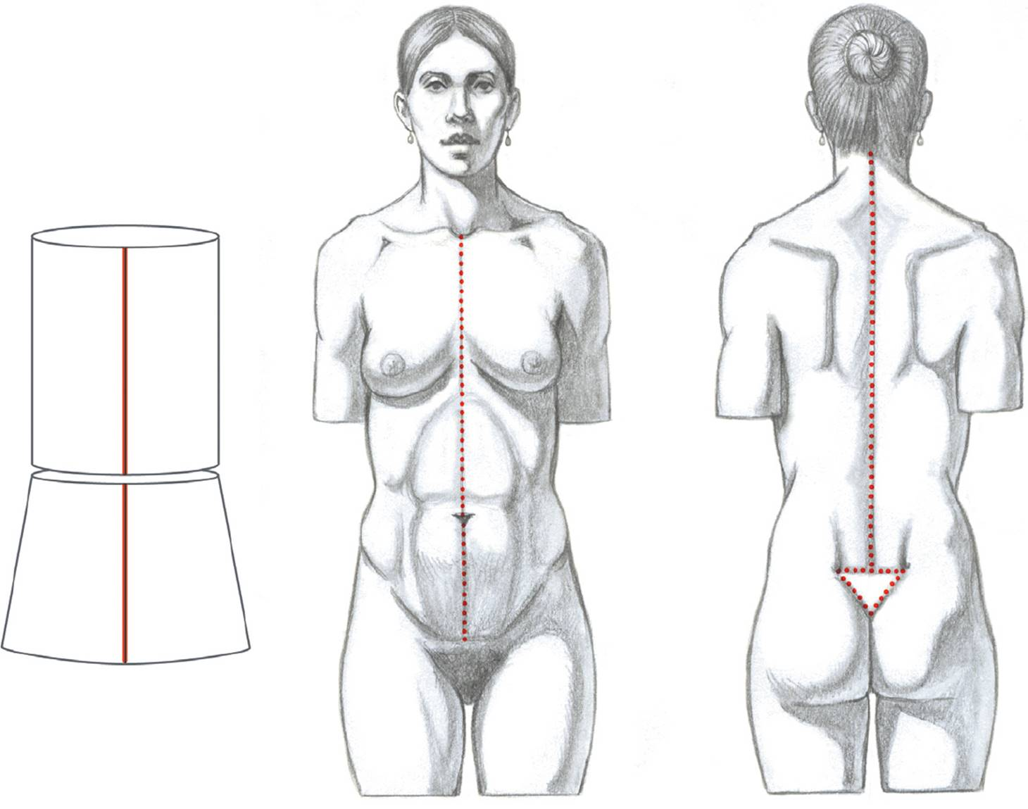 finding movement within the stationary figure - classic human anatomy in  motion: the artist's guide to the dynamics of figure drawing  doctorlib.info