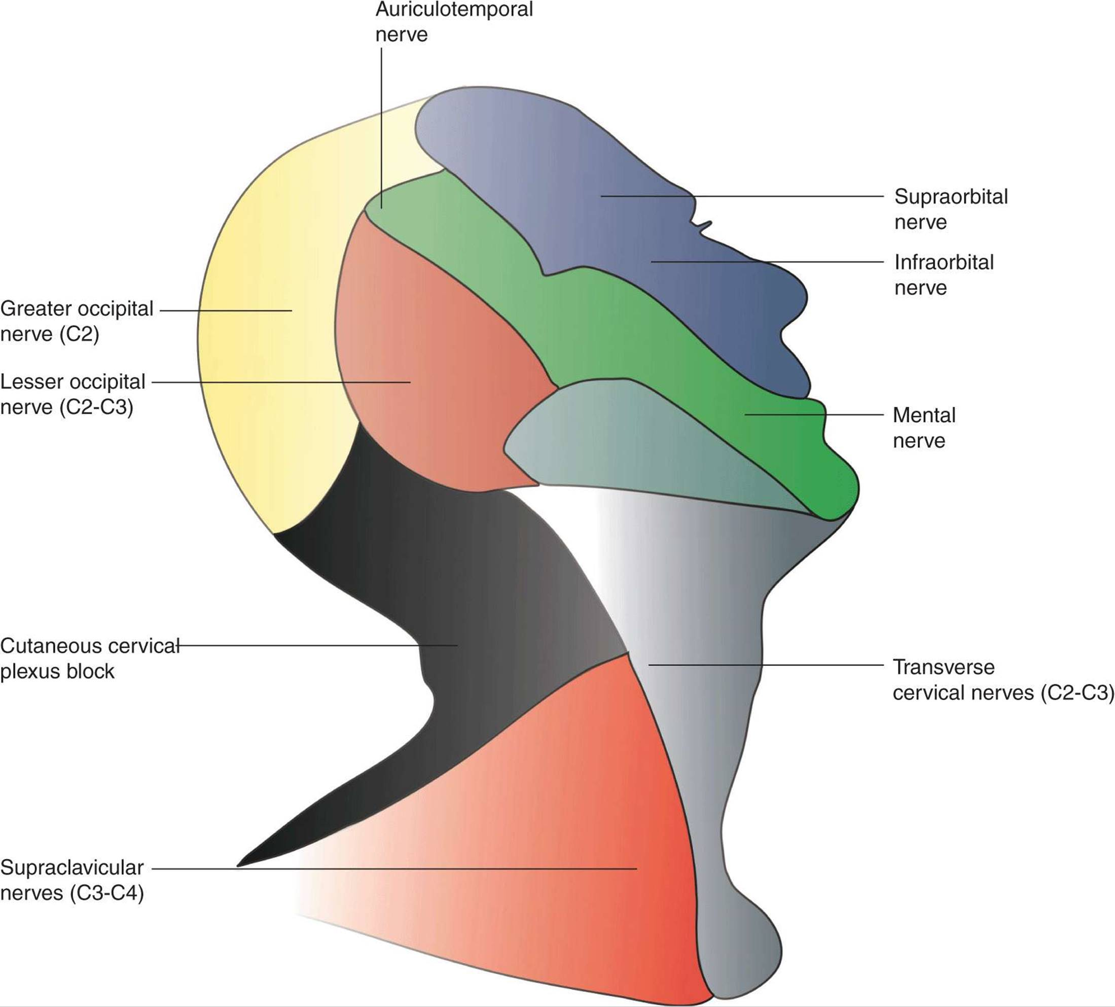 Ultrasound-Guided Cervical Plexus Block - Hadzic\'s Peripheral Nerve ...