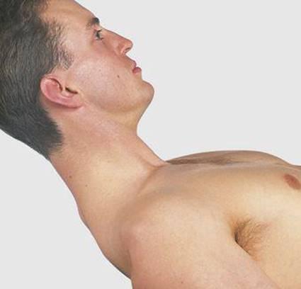Back - Surface Anatomy, 4 Edition