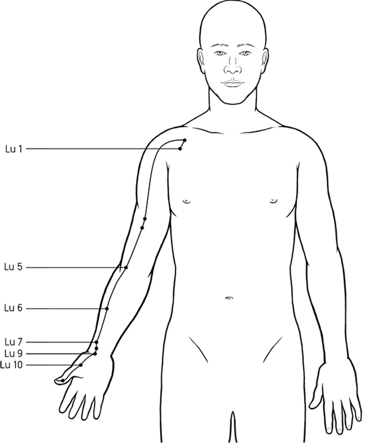 The Acupressure Points: Names, Locations, and Functions