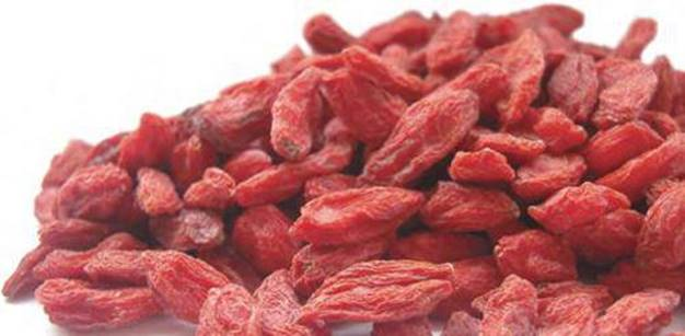 Goji Berries Fountain Of Youth The Top 10 Superfoods