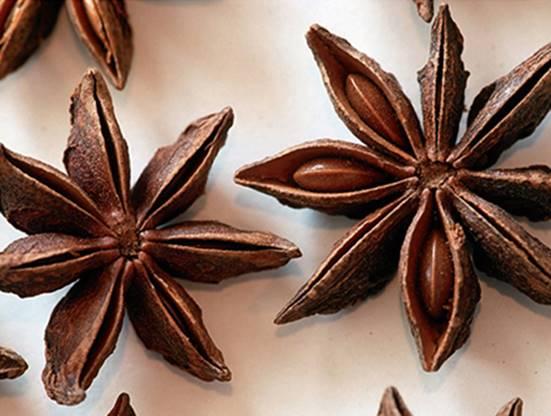 Small Incense Cones Mocha Pot Design Copper Handmade Frankincense Pan 1597
