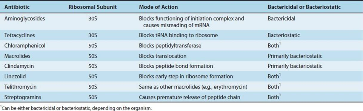 Antimicrobial Drugs  Mechanism Of Action