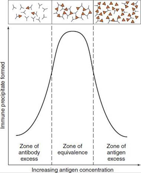 Antigen-Antibody Reactions In The Laboratory
