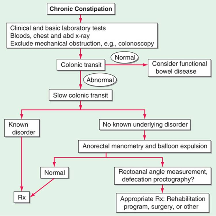 Diarrhea, Constipation, and Malabsorption - Common Patient