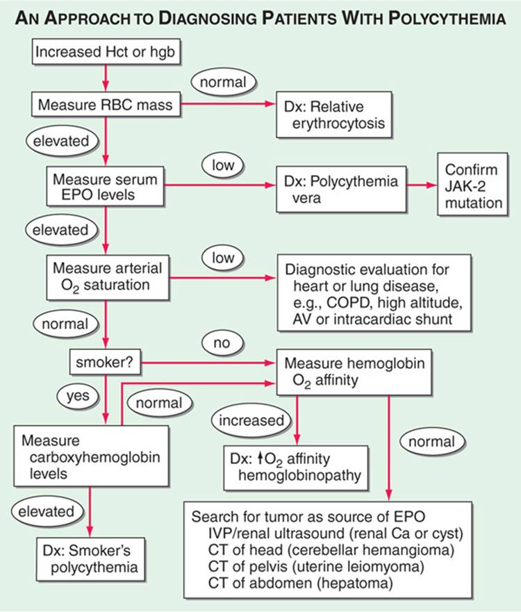 Anemia and Polycythemia - Common Patient Presentations