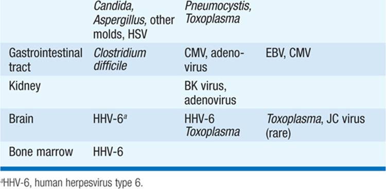 Infections in the Immunocompromised Host - Infectious
