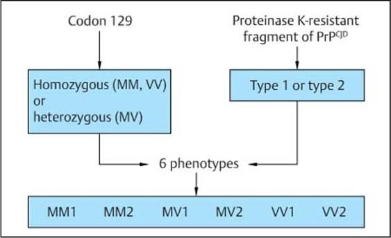 Bradley's Neurology in Clinical Practice, 2