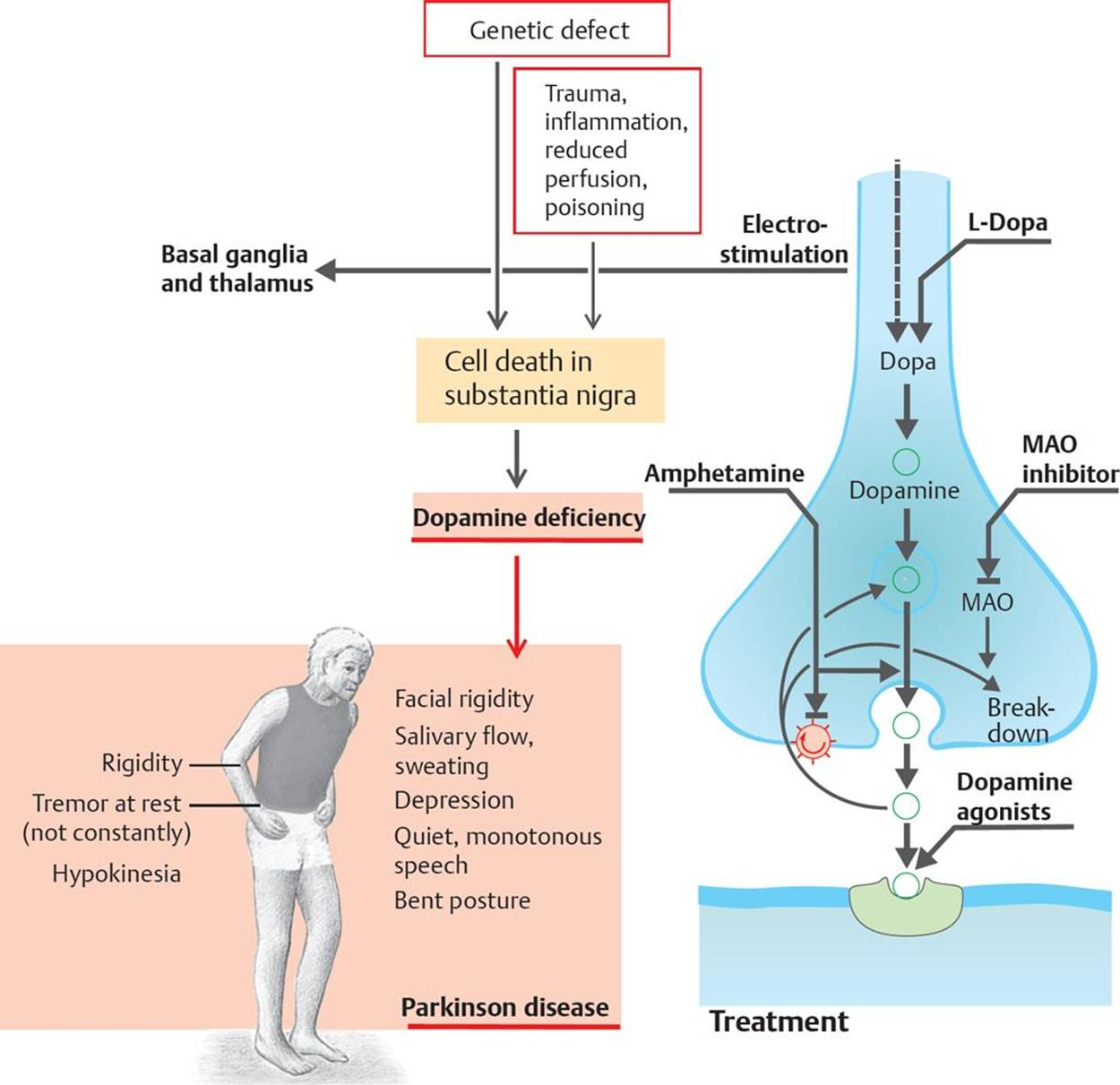 Treatment Of Neurodegenerative Diseases