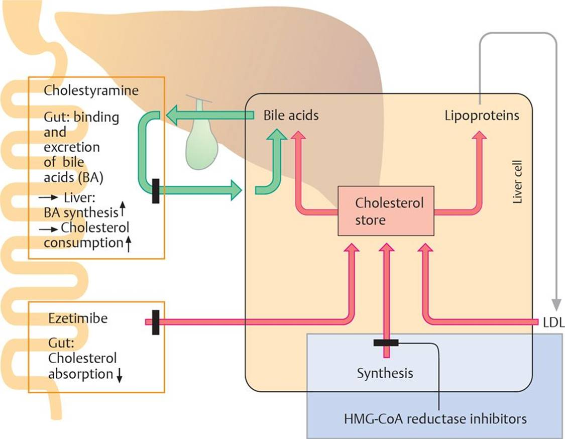 antihyperlipidemic drugs - pharmacology