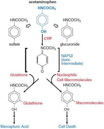 chloroquine phosphate romania