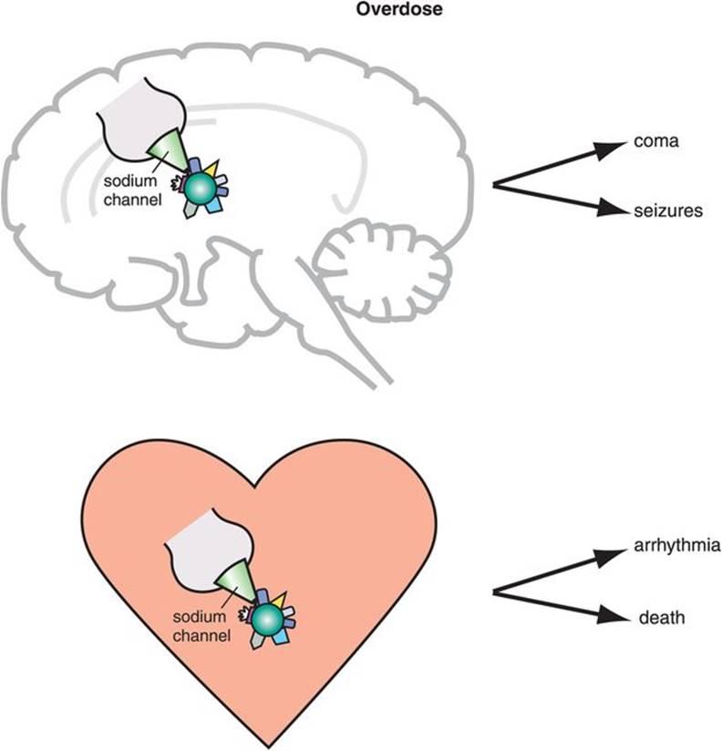 Antidepressants - Stahl's Essential Psychopharmacology