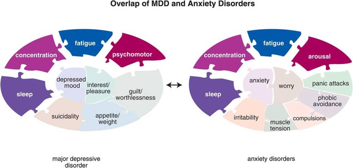 bipolar disorder apa style