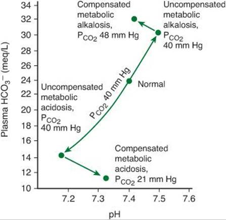 Mild hypoxemia with a fully compensated respiratory acidosis