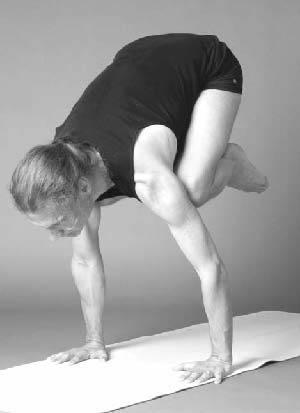 bakasana  ashtanga yoga—the intermediate series