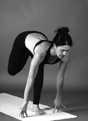 vatayanasana  ashtanga yoga—the intermediate series