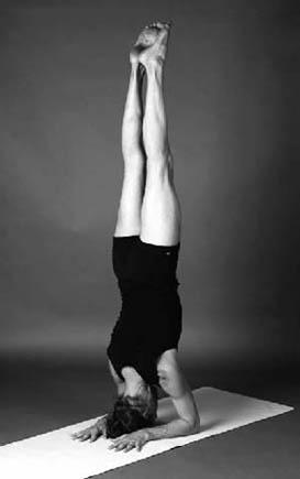 baddha hasta shirshasana  ashtanga yoga—the intermediate