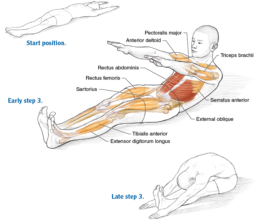 Abdominal Work For Movement And Stabilization Pilates