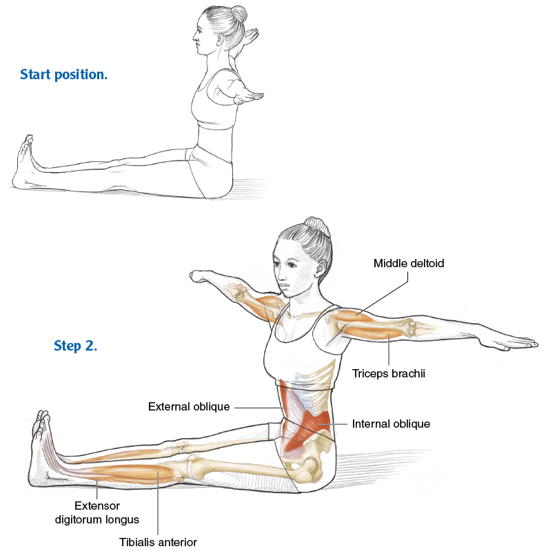 Side Exercises for an Effective Core - Pilates Anatomy